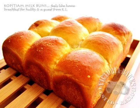 kopitiam milk buns