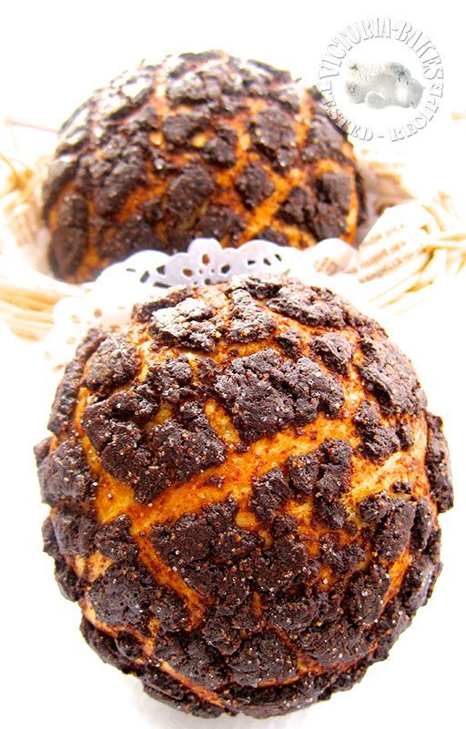 coffee choco polo buns