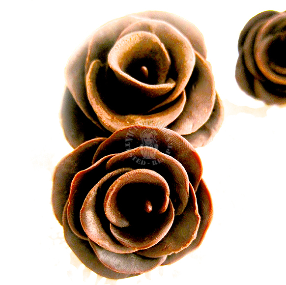 chocolate rose ~ win USD160 Paypal cash this CNY 巧克力玫瑰花 ~ 160美元贝宝奖金等您赢取