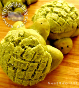 turtle matcha buns